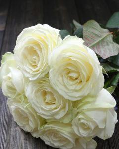 Купить розы аваланж в Москве