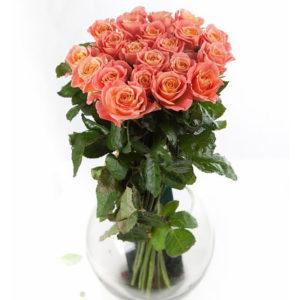 Купить розы Мисс Пигги в Москве с доставкой